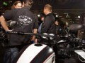 Lobo Bikes - Custombike 2011-18