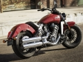 Scout sixty (16)