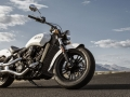 Scout sixty (19)